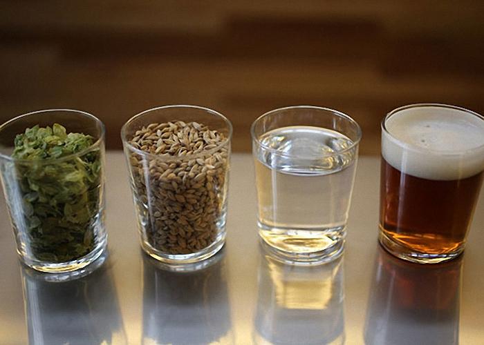 Изготовление пива в домашних условиях из хмеля