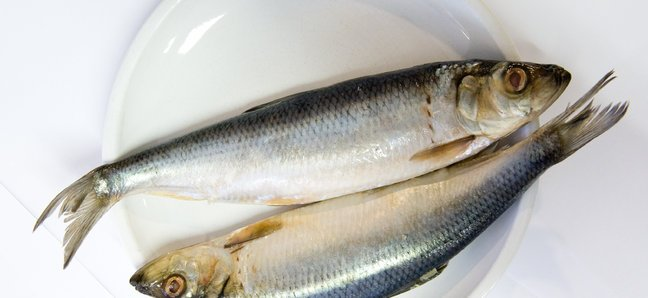 Lezzetli Baltık ringa balığı: yemek tarifleri